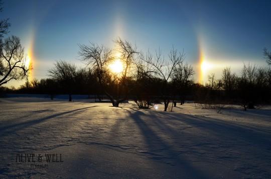 Sun dogs in the Kansas sky.